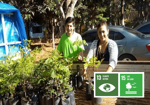 200 Seedlings Afforestation and Conference on Values and Environmental Protection (Paraguay)
