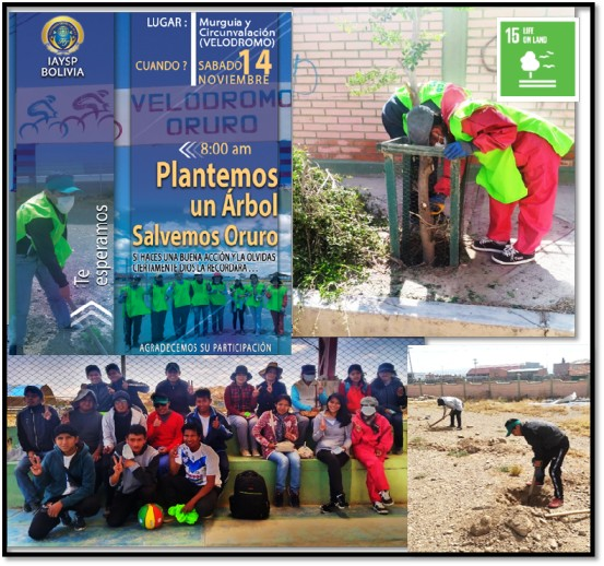 Social Activity: Planting trees in the Oruro Velodrome (Bolivia)